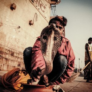 street photography of varanasi india ghat man and snake